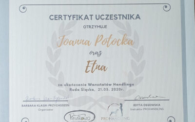 Szkolenie – Handling z Edytą Ossowską